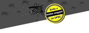 campanha aedes_destaque_site-01