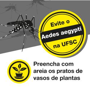 campanha aedes_redes_sociais-04